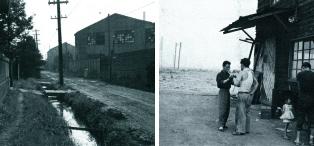 1950年代の本社工場周辺