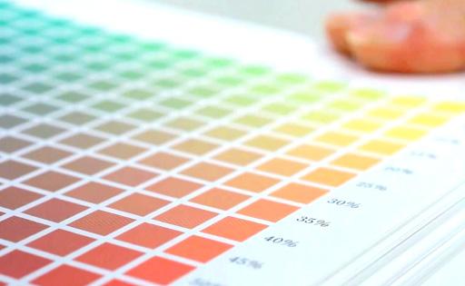 Japan Color認証のカラーマネジメント体制